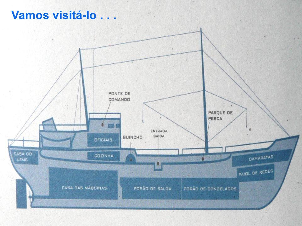 Convés superior, mastro e redes...