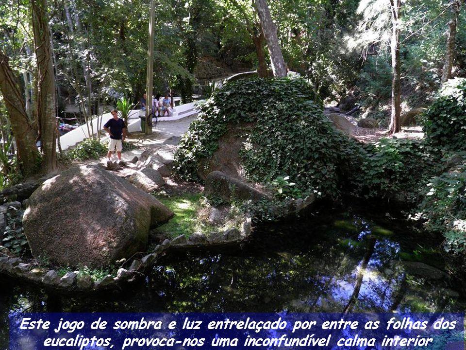 Aqui, nesta Fonte dos Amores brota água fresca, acessível a todos visitantes que não se cansam de encher os garrafões.