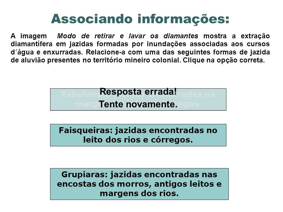 Conclusões parciais Identifique: 1.O objetivo dos portugueses ao desenvolver a mineração.
