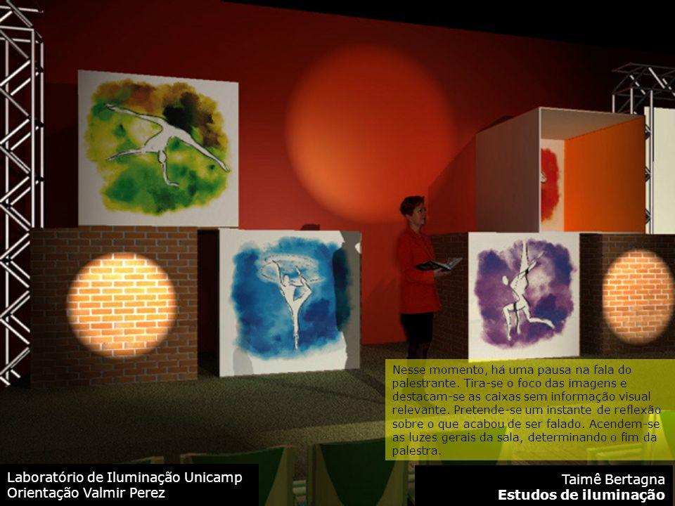 Laboratório de Iluminação Unicamp Orientação Valmir Perez Taimê Bertagna Estudos de iluminação Nesse momento, há uma pausa na fala do palestrante.