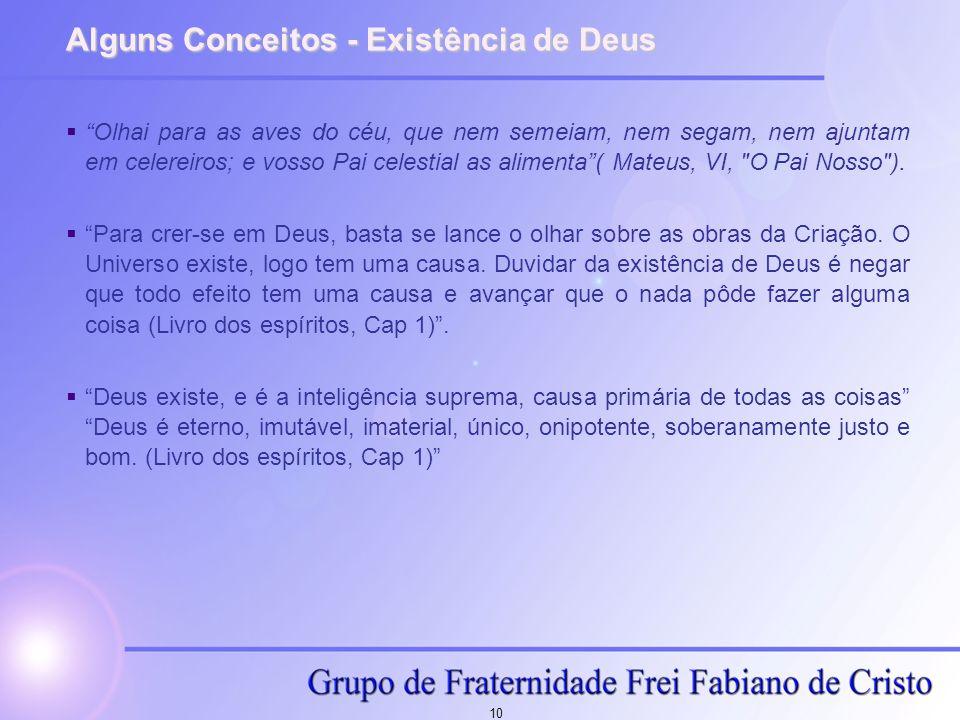 10 Alguns Conceitos - Existência de Deus Olhai para as aves do céu, que nem semeiam, nem segam, nem ajuntam em celereiros; e vosso Pai celestial as al
