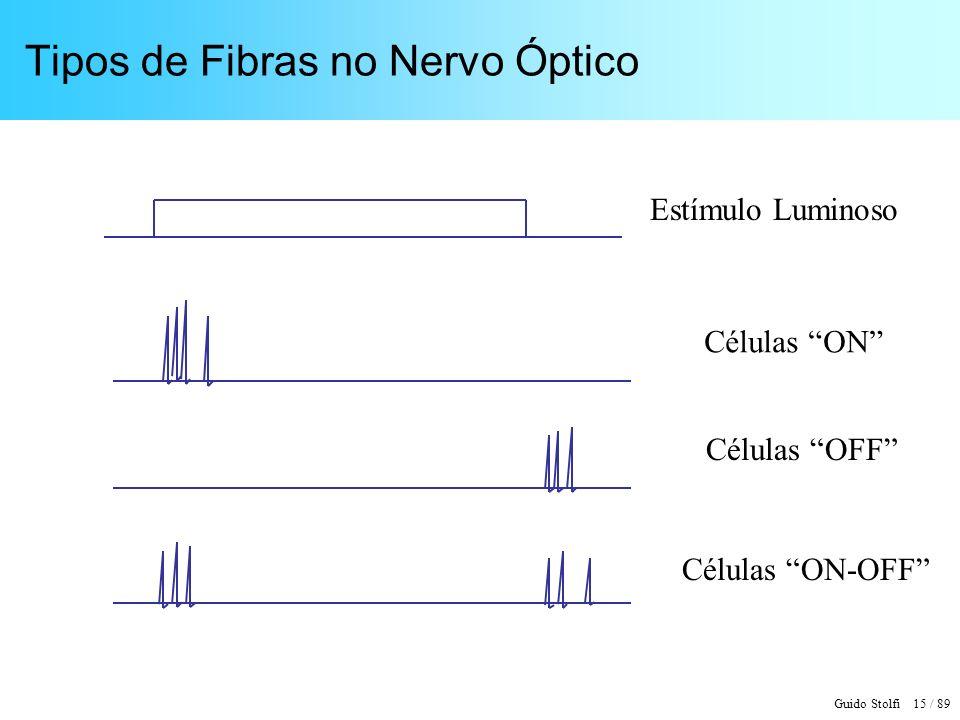 Guido Stolfi 15 / 89 Tipos de Fibras no Nervo Óptico Estímulo Luminoso Células ON Células OFF Células ON-OFF