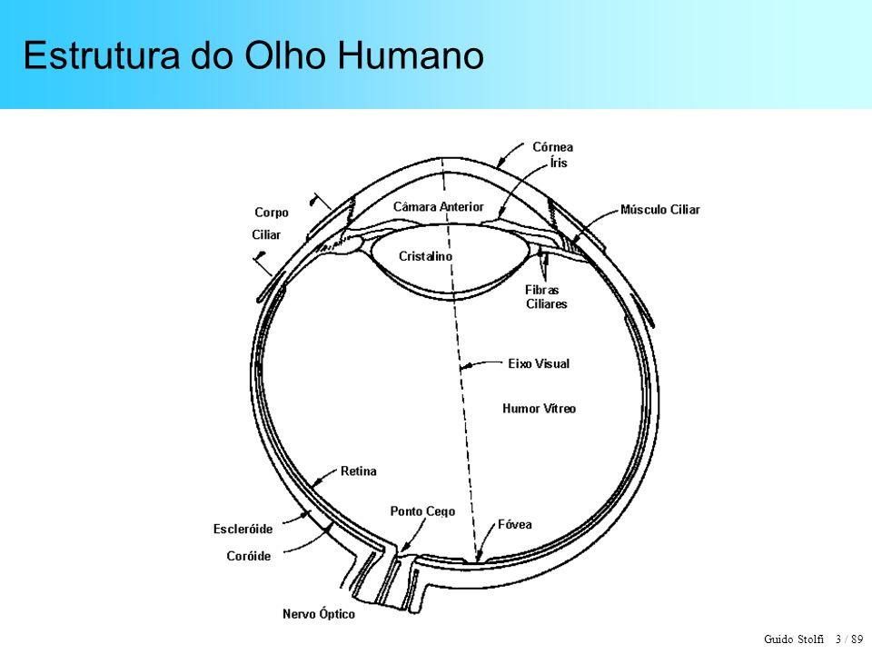 Guido Stolfi 3 / 89 Estrutura do Olho Humano