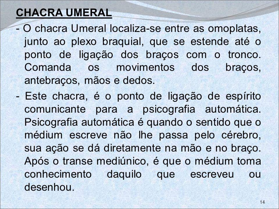 CHACRA UMERAL - O chacra Umeral localiza-se entre as omoplatas, junto ao plexo braquial, que se estende até o ponto de ligação dos braços com o tronco