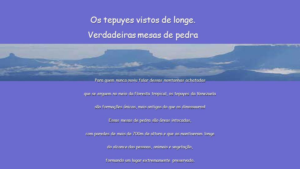 TERRAS TEPUYES MONTANHAS ACHATADAS Parque Nacional de Canaima, constituído em 1962 e declarado Patrimônio da Humanidade pela UNESCO em 1994. Trata-se