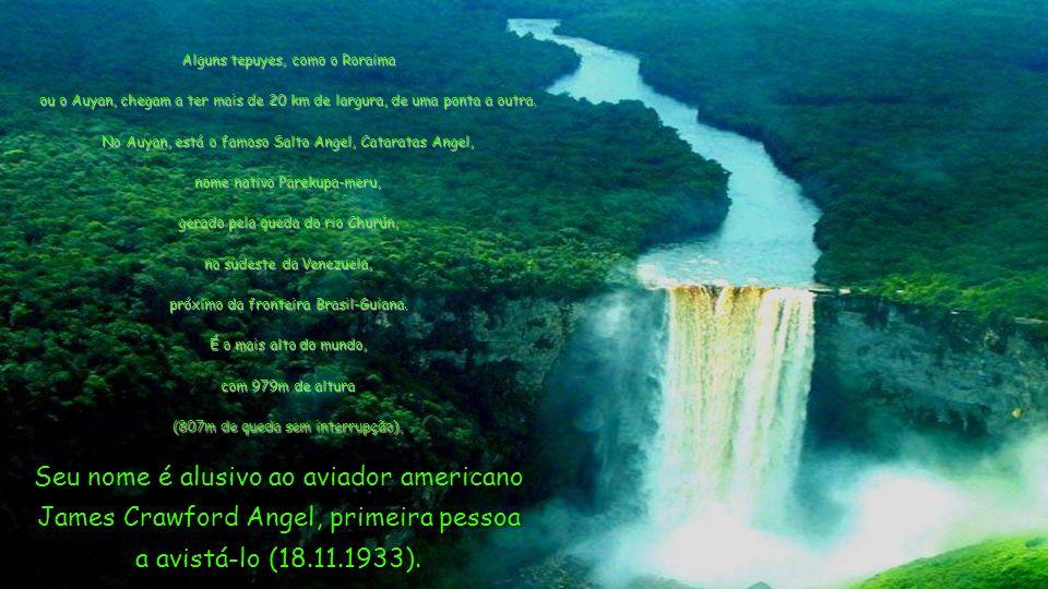 Existem cerca de 14 grandes tepuyes no mundo, e todos estão em território venezuelano, exceto o Roraima, que faz divisa com Brasil, Guiana e - de novo