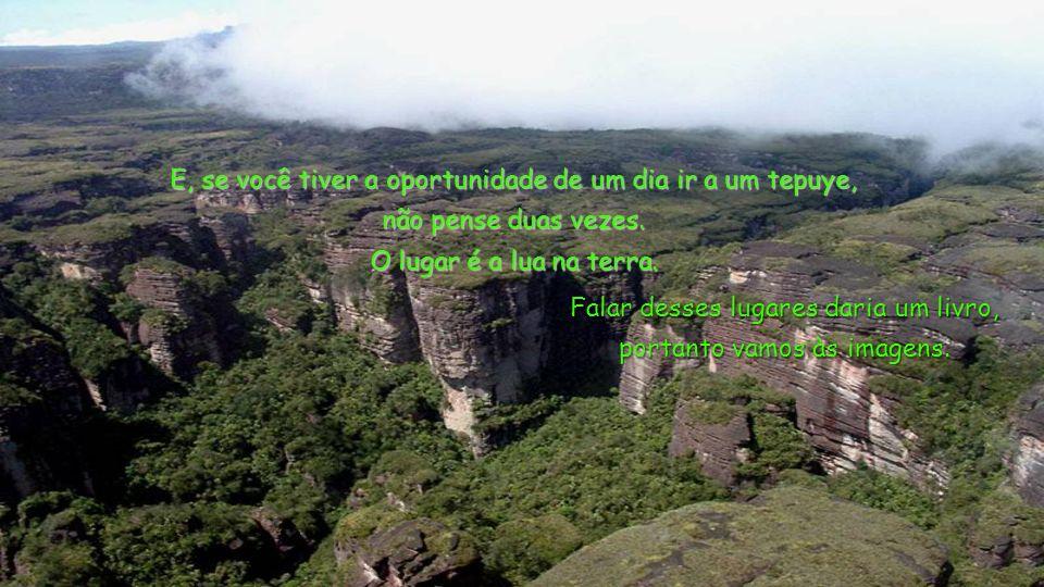 Alguns tepuyes, como o Roraima ou o Auyan, chegam a ter mais de 20 km de largura, de uma ponta a outra. No Auyan, está o famoso Salto Angel, Cataratas