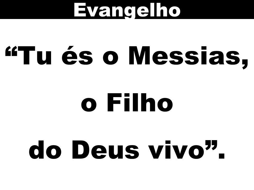 Tu és o Messias, o Filho do Deus vivo. Evangelho