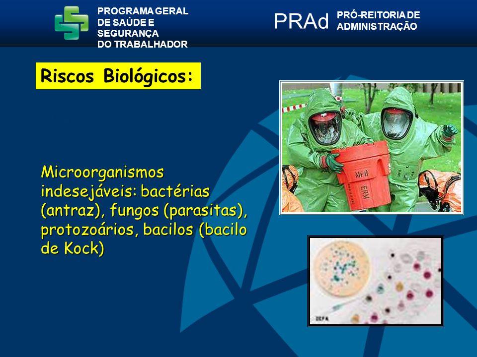 Microorganismos indesejáveis: bactérias (antraz), fungos (parasitas), protozoários, bacilos (bacilo de Kock) PROGRAMA GERAL DE SAÚDE E SEGURANÇA DO TRABALHADOR PRÓ-REITORIA DE ADMINISTRAÇÃO PRAd Riscos Biológicos: