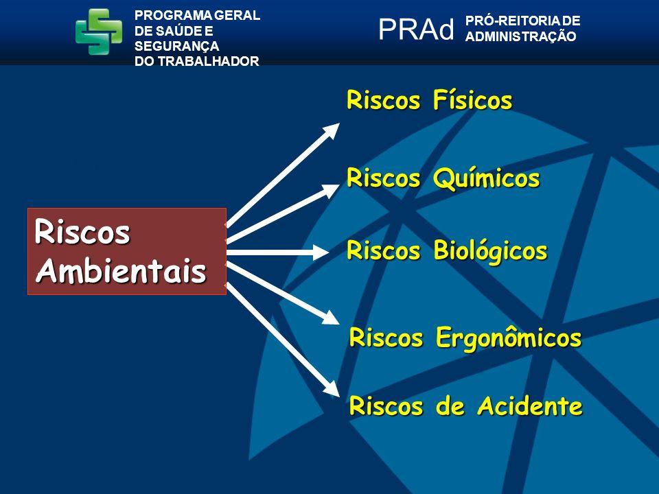 Riscos de Acidente Riscos Físicos Riscos Ergonômicos Riscos Químicos Riscos Biológicos PROGRAMA GERAL DE SAÚDE E SEGURANÇA DO TRABALHADOR PRÓ-REITORIA DE ADMINISTRAÇÃO PRAd Riscos Ambientais