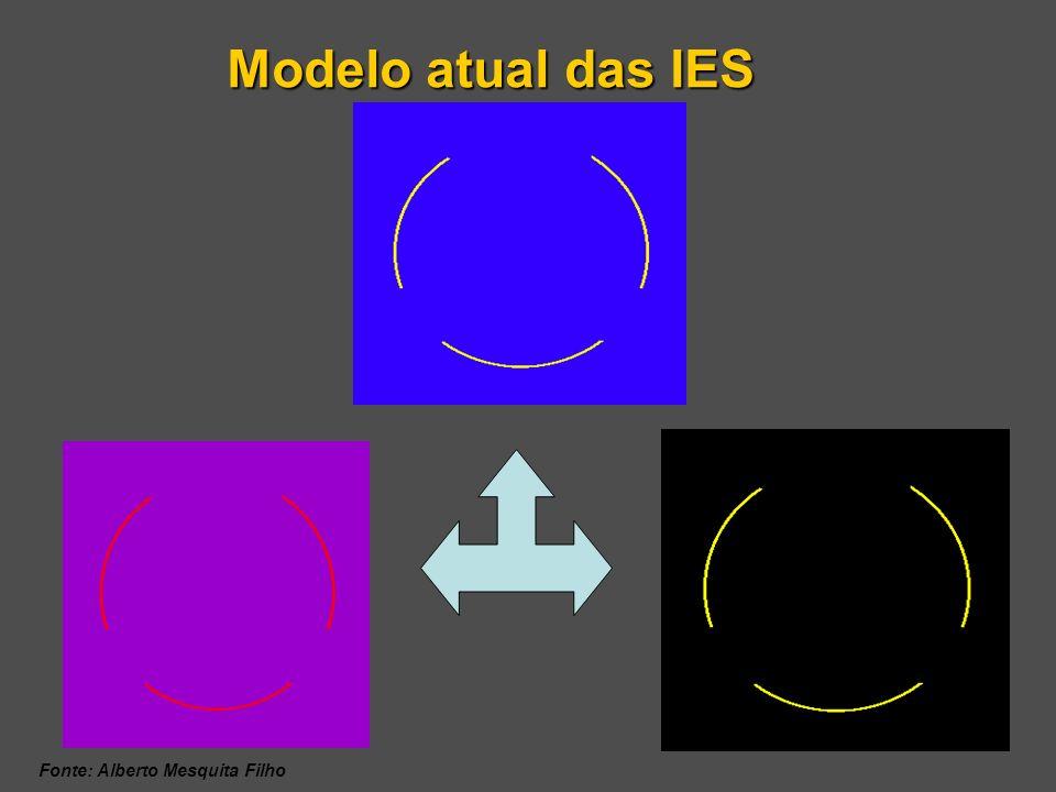 Modelo atual das IES