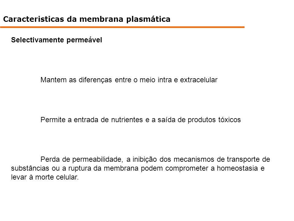 Caracteristicas da membrana plasmática Selectivamente permeável Mantem as diferenças entre o meio intra e extracelular Permite a entrada de nutrientes