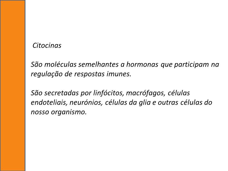 Citocinas São moléculas semelhantes a hormonas que participam na regulação de respostas imunes. São secretadas por linfócitos, macrófagos, células end