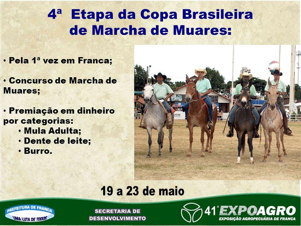 4ª Etapa da Copa Brasileira de Marcha de Muares: Pela 1ª vez em Franca; Concurso de Marcha de Muares; Premiação em dinheiro por categorias: Mula Adulta; Dente de leite; Burro.