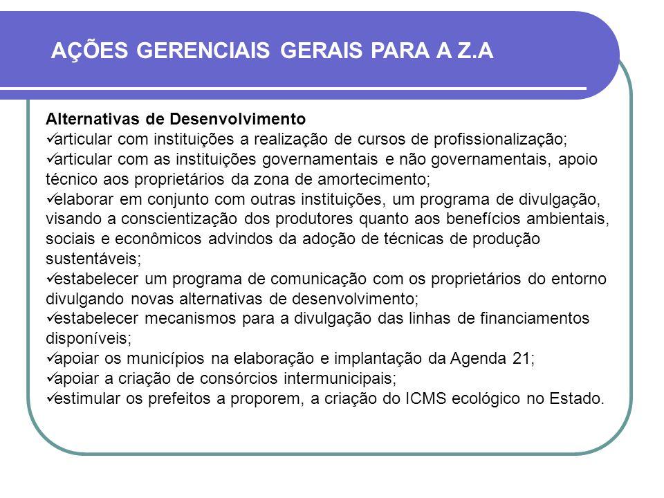 AÇÕES GERENCIAIS GERAIS PARA A Z.A Alternativas de Desenvolvimento articular com instituições a realização de cursos de profissionalização; articular
