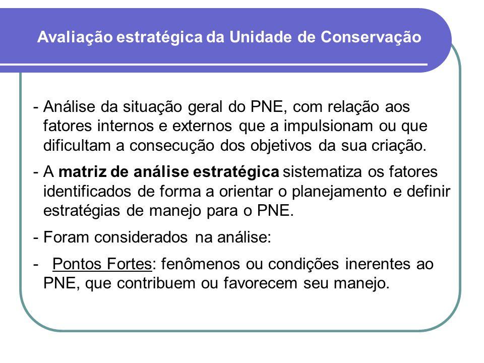 Análise da situação geral do PNE, com relação aos fatores internos e externos que a impulsionam ou que dificultam a consecução dos objetivos da sua criação.