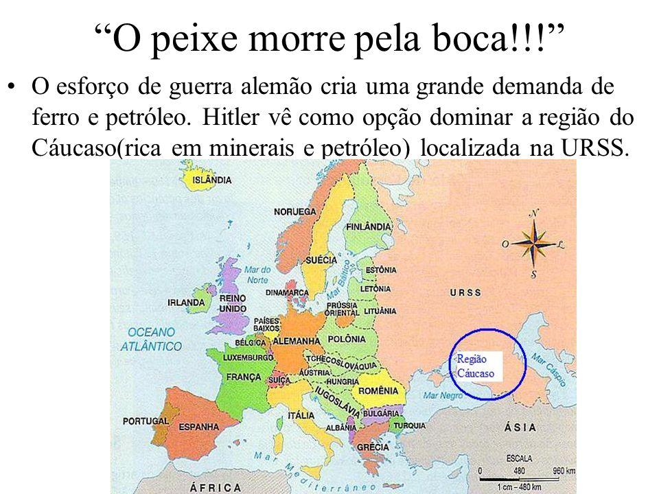 O peixe morre pela boca!!! O esforço de guerra alemão cria uma grande demanda de ferro e petróleo. Hitler vê como opção dominar a região do Cáucaso(ri