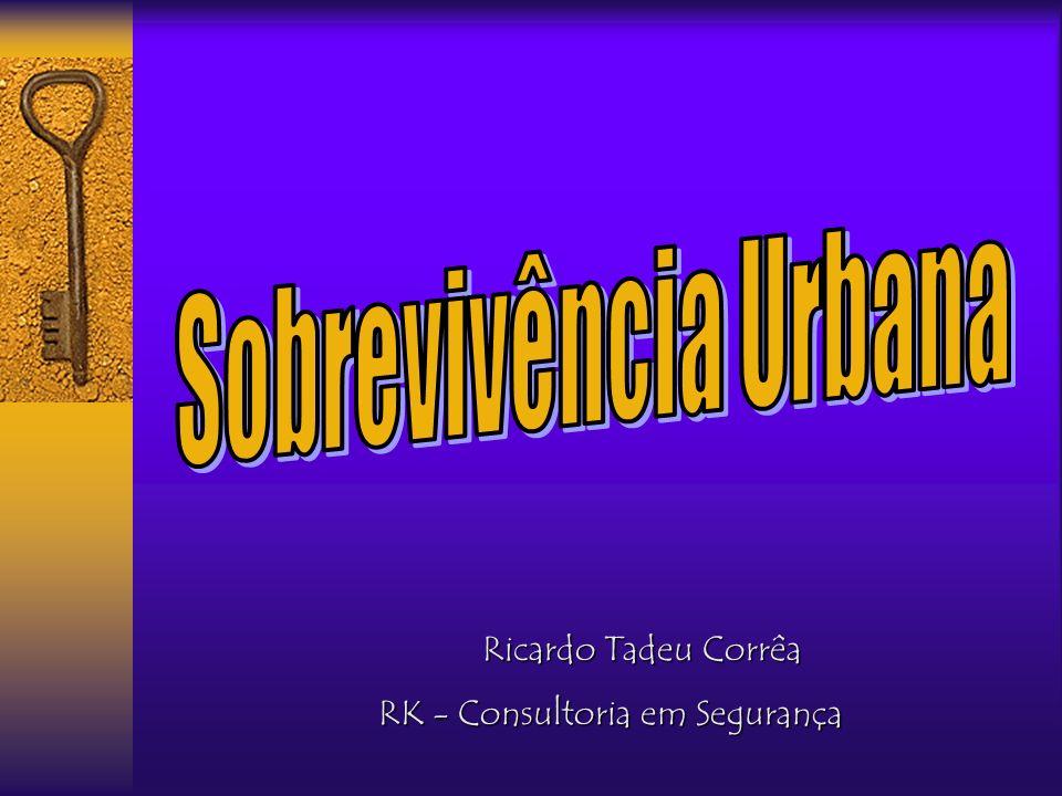 Ricardo Tadeu Corrêa RK - Consultoria em Segurança