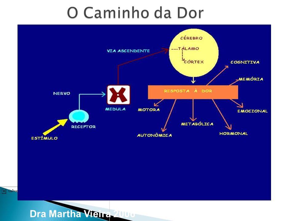 Dra Martha Vieira 2006