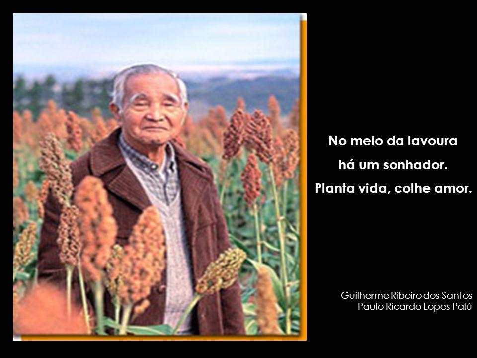No meio da lavoura há um sonhador. Planta vida, colhe amor. Guilherme Ribeiro dos Santos Paulo Ricardo Lopes Palú