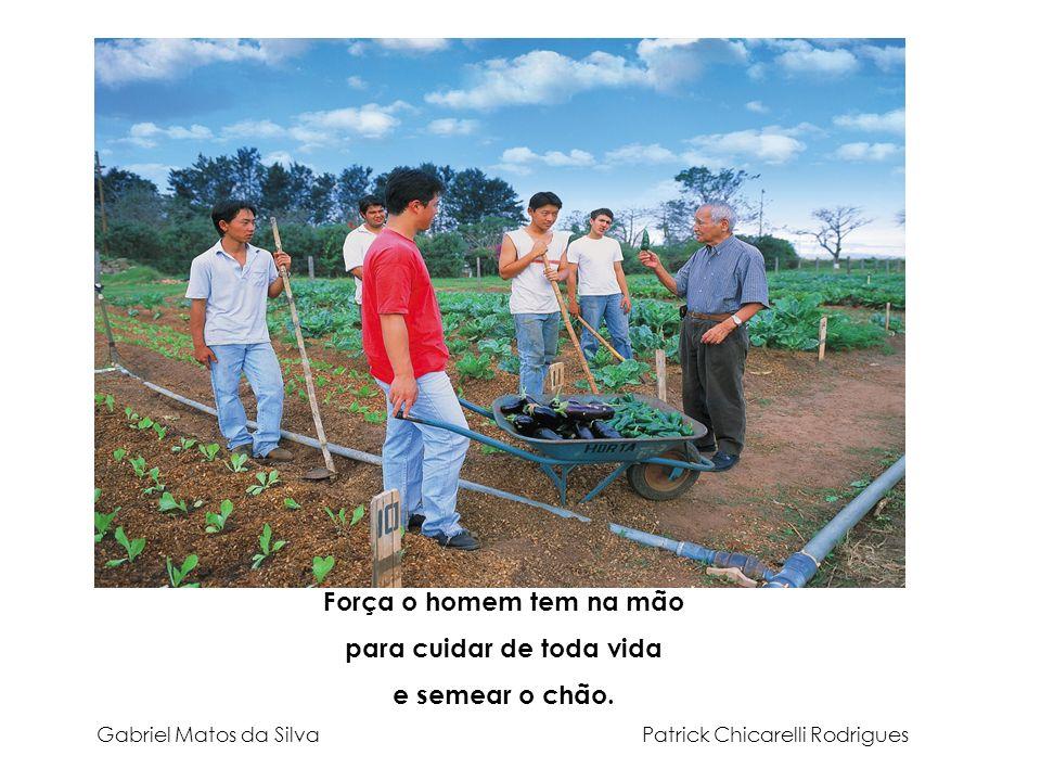 Força o homem tem na mão para cuidar de toda vida e semear o chão. Gabriel Matos da Silva Patrick Chicarelli Rodrigues