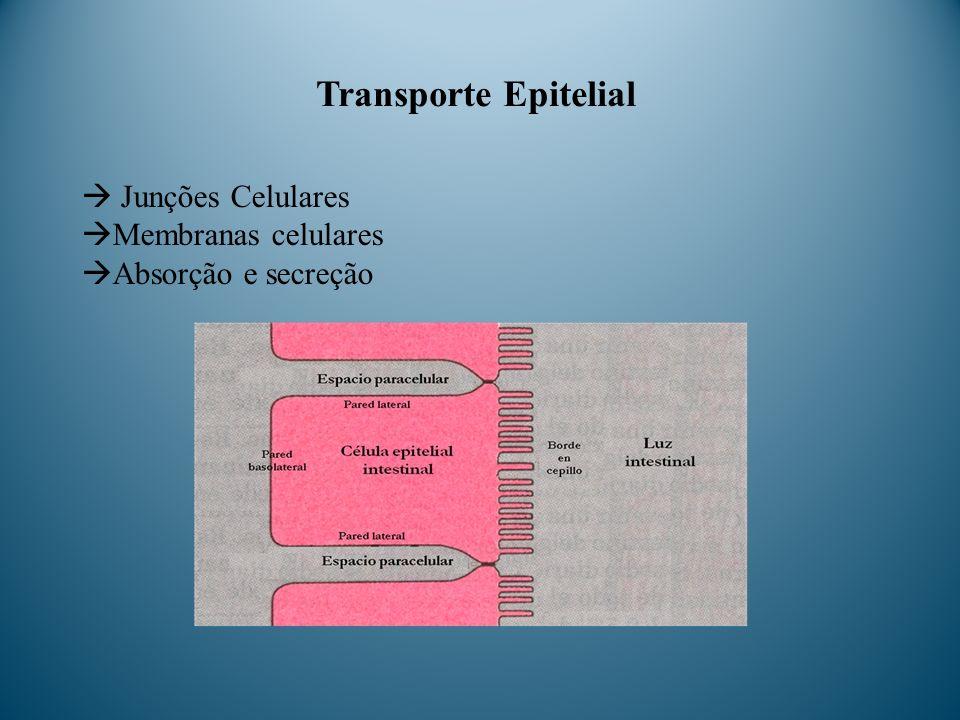 Transporte Epitelial Junções Celulares Membranas celulares Absorção e secreção