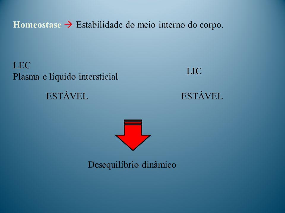 Homeostase LEC Plasma e líquido intersticial LIC Desequilíbrio dinâmico ESTÁVEL Estabilidade do meio interno do corpo.