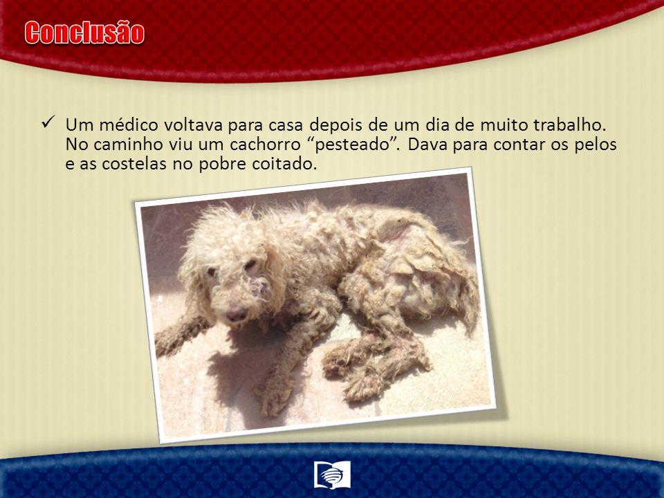 Um médico voltava para casa depois de um dia de muito trabalho. No caminho viu um cachorro pesteado. Dava para contar os pelos e as costelas no pobre