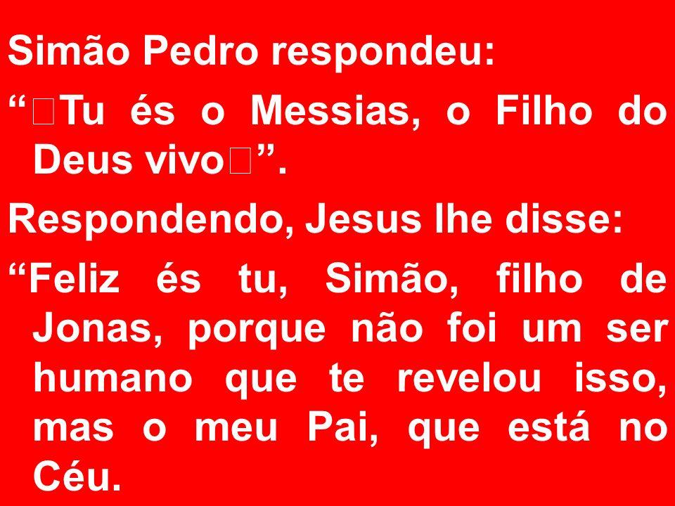"""Simão Pedro respondeu: """"Tu és o Messias, o Filho do Deus vivo"""". Respondendo, Jesus lhe disse: Feliz és tu, Simão, filho de Jonas, porque não foi um se"""