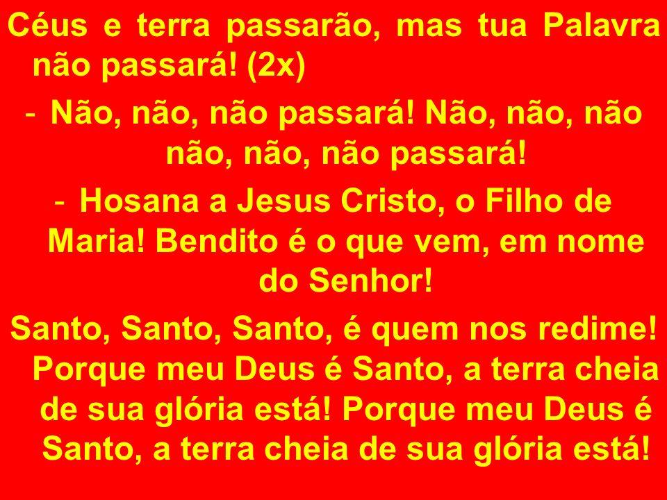 Céus e terra passarão, mas tua Palavra não passará! (2x) -Não, não, não passará! Não, não, não não, não, não passará! -Hosana a Jesus Cristo, o Filho