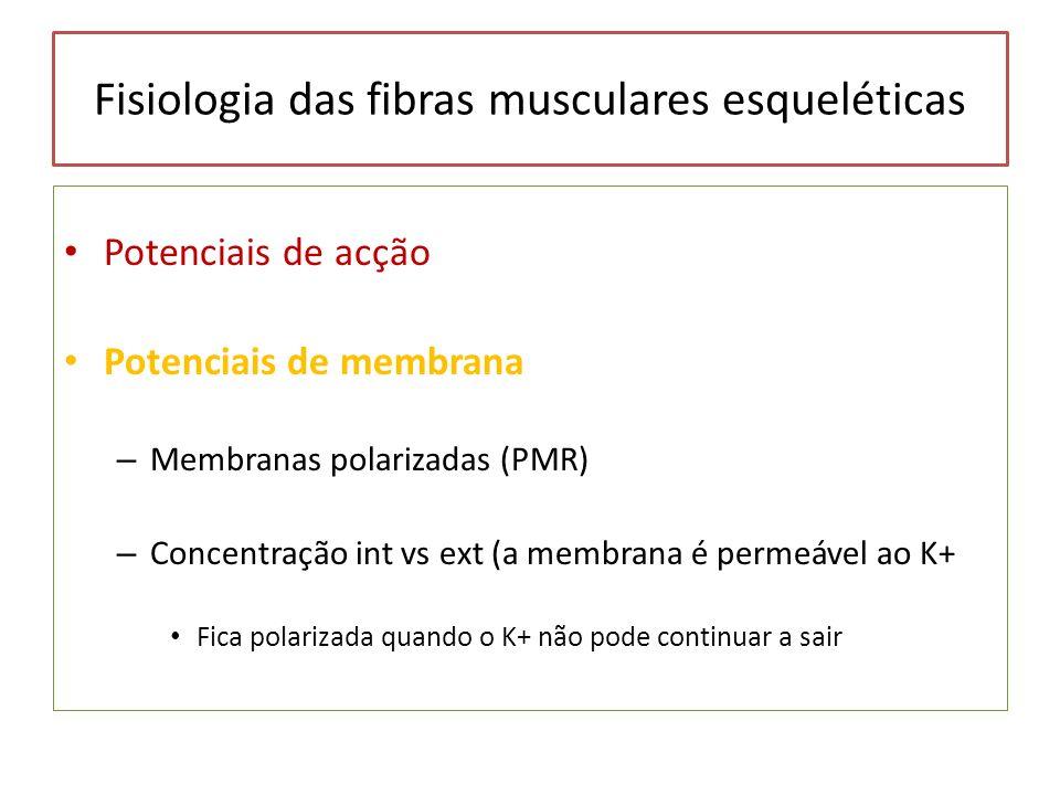 Fisiologia das fibras musculares esqueléticas Potenciais de acção Potenciais de membrana – Membranas polarizadas (PMR) – Concentração int vs ext (a me