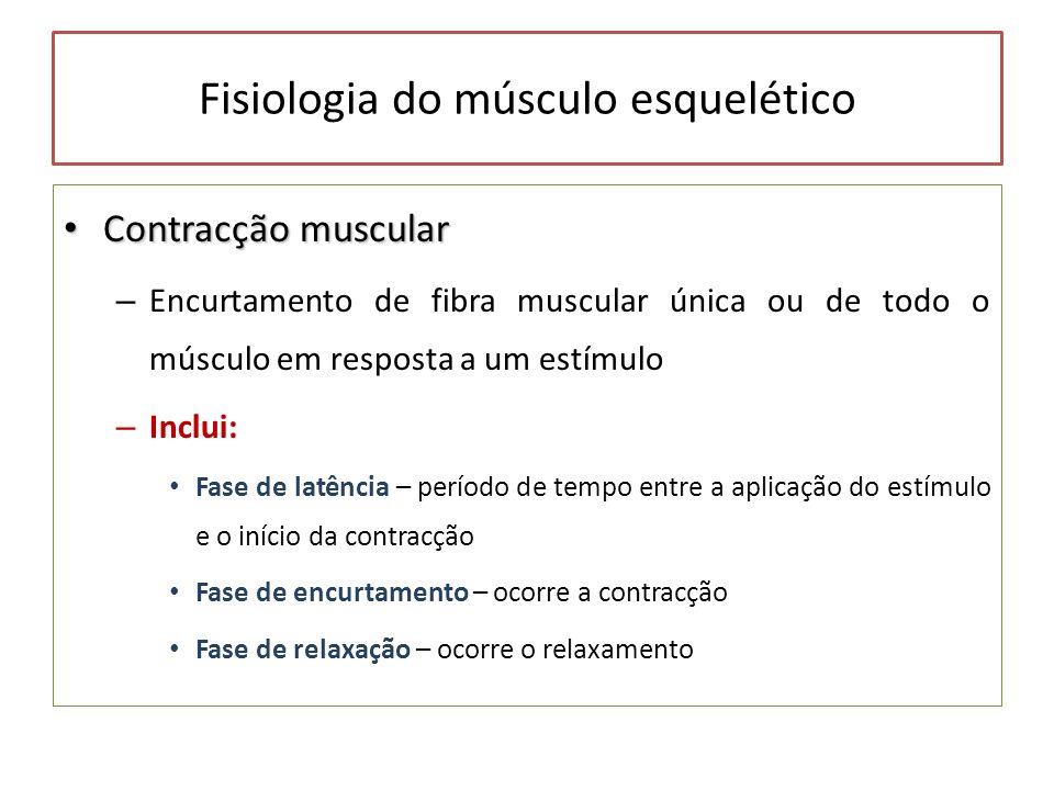 Fisiologia do músculo esquelético Contracção muscular Contracção muscular – Encurtamento de fibra muscular única ou de todo o músculo em resposta a um