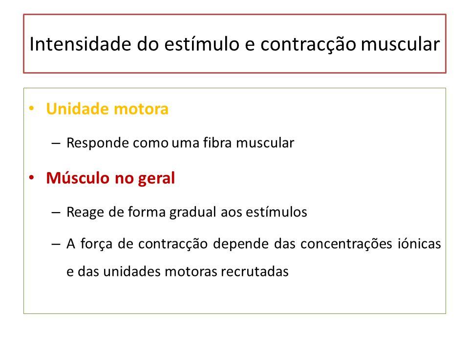 Intensidade do estímulo e contracção muscular Unidade motora – Responde como uma fibra muscular Músculo no geral – Reage de forma gradual aos estímulo