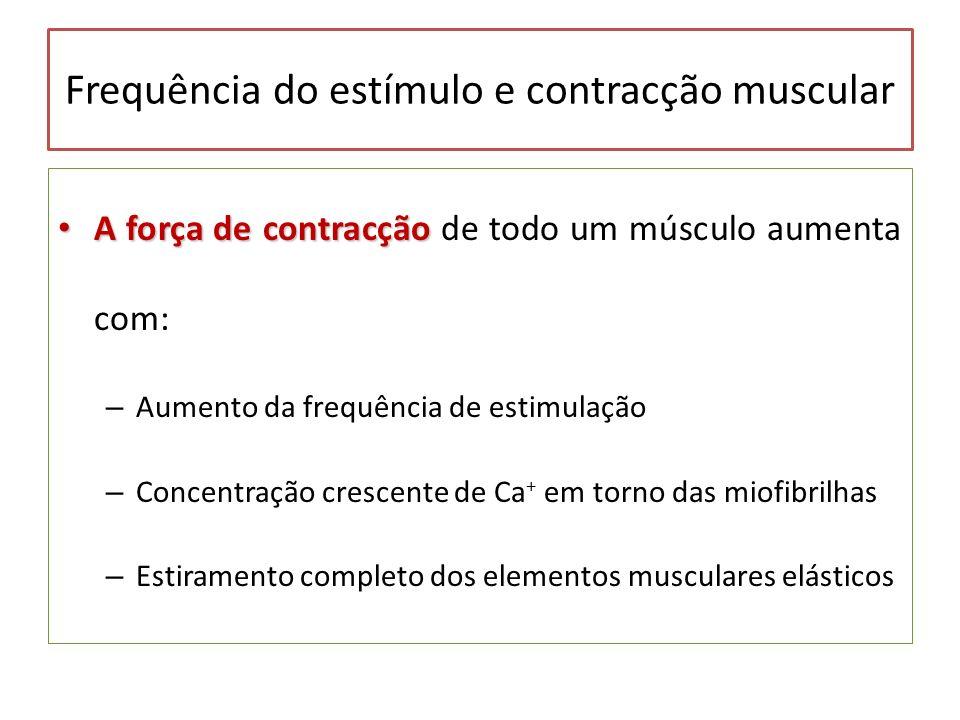 Frequência do estímulo e contracção muscular A força de contracção A força de contracção de todo um músculo aumenta com: – Aumento da frequência de es