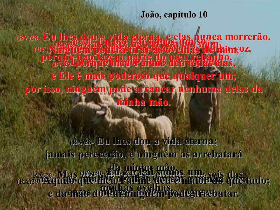João, capítulo 10 (BV)26- Mas vocês não crêem em mim porque não fazem parte do meu rebanho.