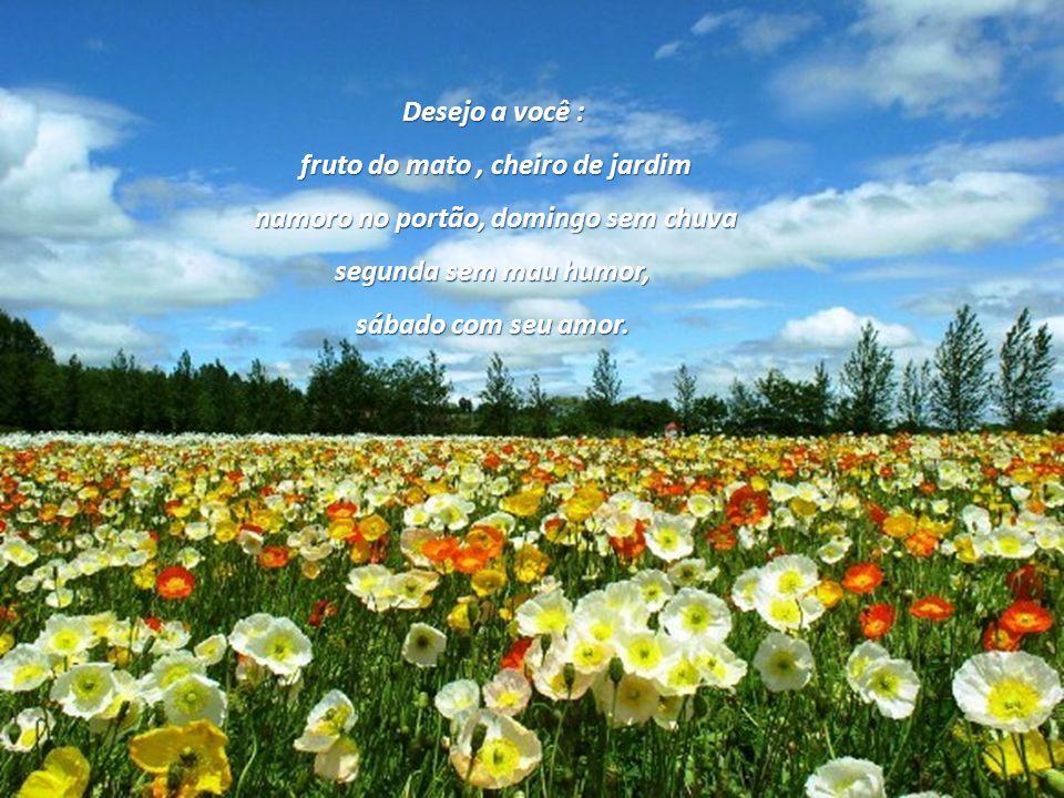 Síntese da Felicidade Carlos Drummond de Andrade