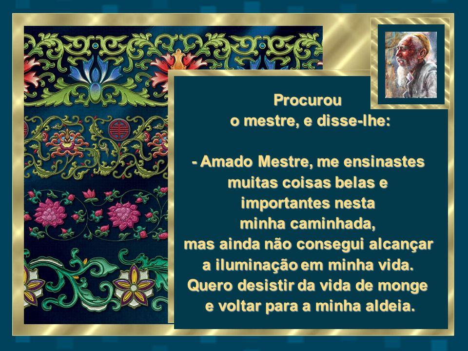 Procurou o mestre, e disse-lhe: - Amado Mestre, me ensinastes muitas coisas belas e importantes nesta minha caminhada, mas ainda não consegui alcançar a iluminação em minha vida.