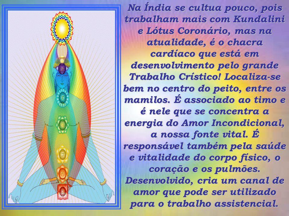 O Despertar das 12 Pétalas do Chakra Cardíaco As 12 Pétalas são as chamadas hoje de, O Lótus do Chacra Chardíaco!