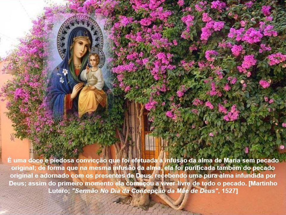 Se é verdade que Maria é a Arca da Nova Aliança, então ela deveria ter sido pura, e não pôde ter nenhum pecado original. O fato que Maria nasceu sem p