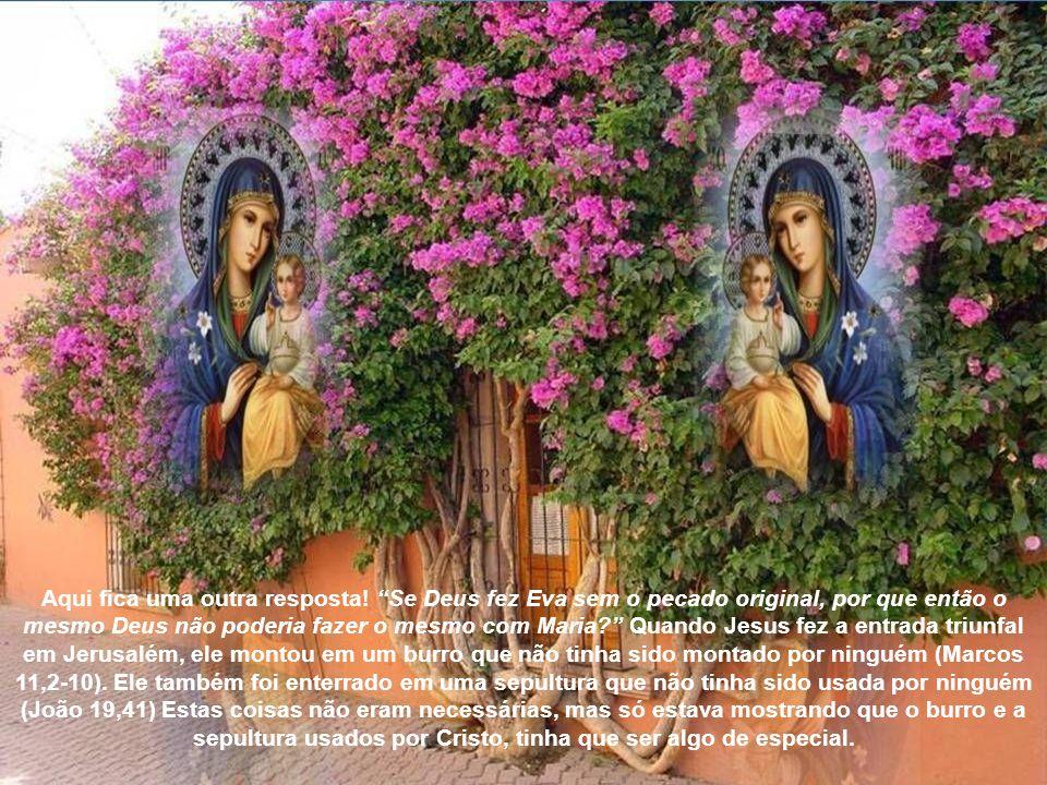É uma doce e piedosa convicção que foi efetuada a infusão da alma de Maria sem pecado original; de forma que na mesma infusão da alma, ela foi purific