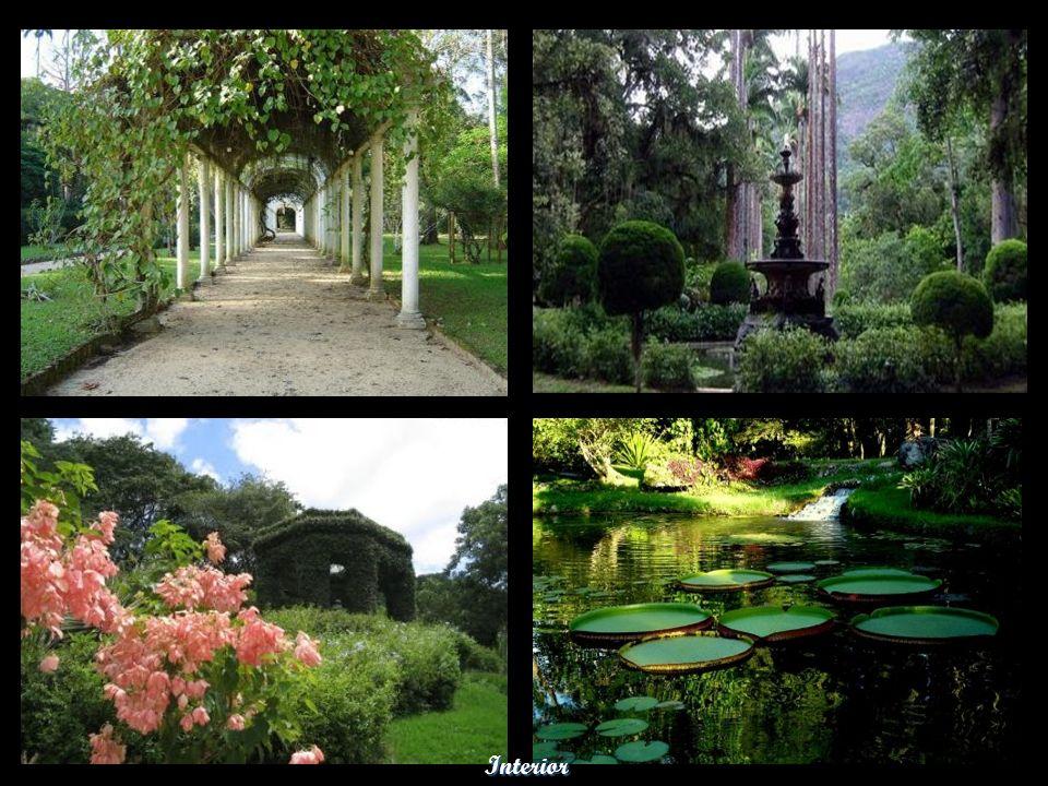 Museu Nacional – Quinta da Boa Vista