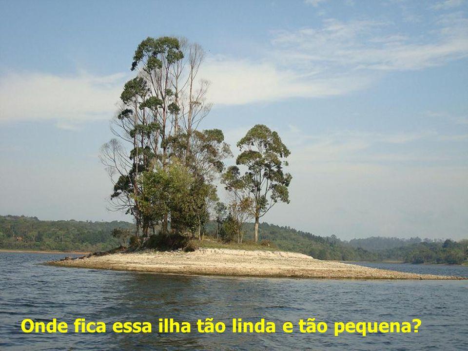 Imagens do Parque Santo Dias Trilha de Cooper, com cerca de 1 km de extensão Entrada do Parque, na Rua Jasmim da Beirada, nº 71 (portão 1).