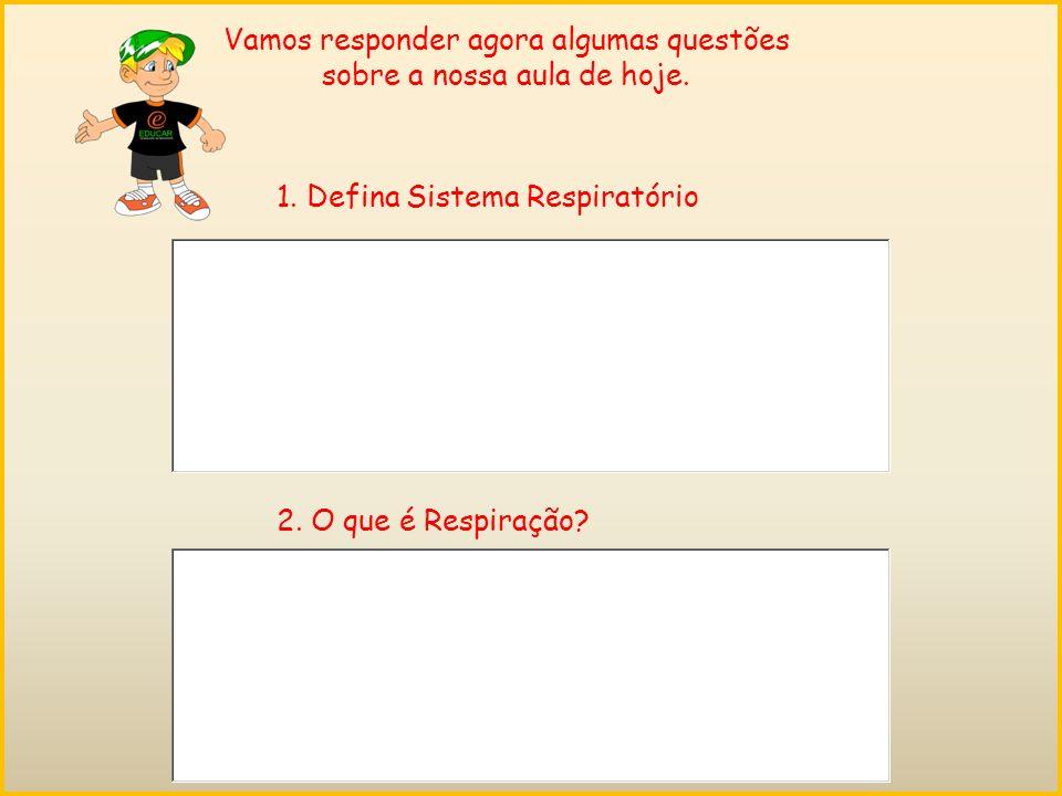 Vamos responder agora algumas questões sobre a nossa aula de hoje.