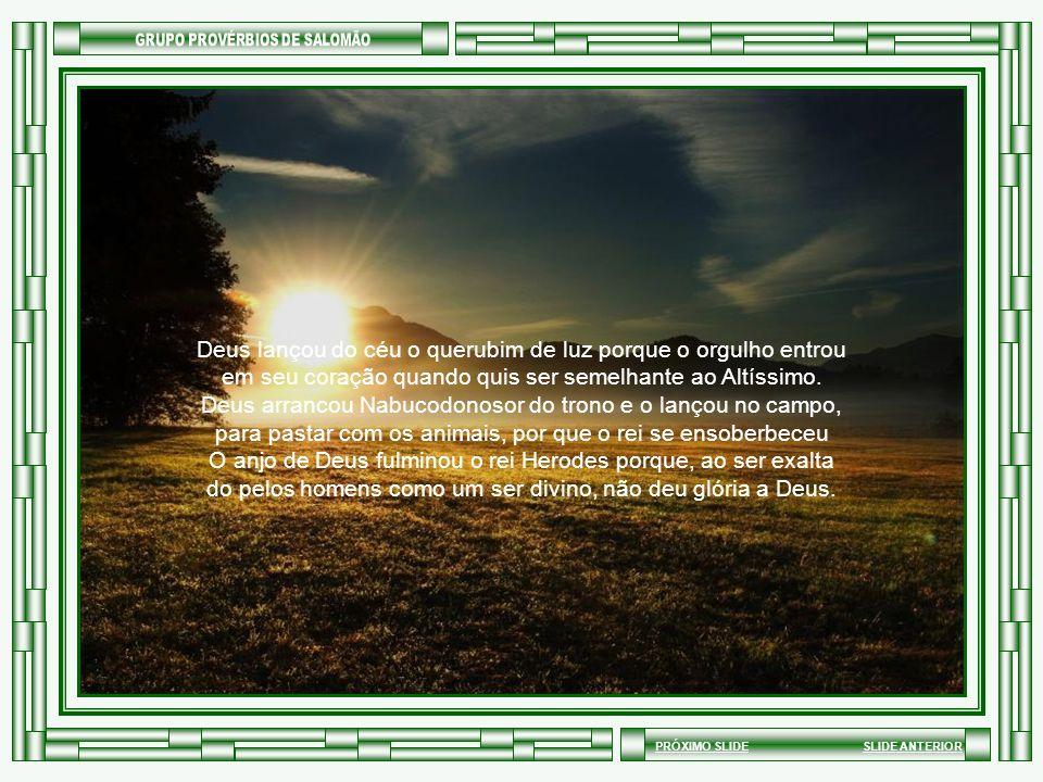 SLIDE ANTERIORPRÓXIMO SLIDE Deus lançou do céu o querubim de luz porque o orgulho entrou em seu coração quando quis ser semelhante ao Altíssimo.