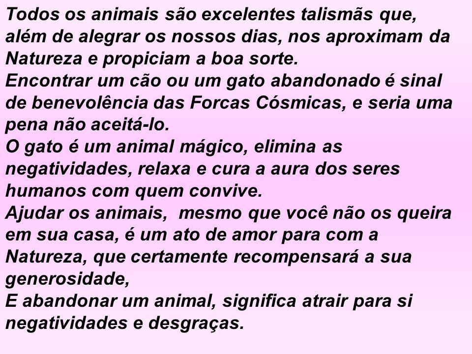 Lembre-se do que escreveu São Francisco de Assis: -Quem maltrata um animal jamais poderá ser feliz!