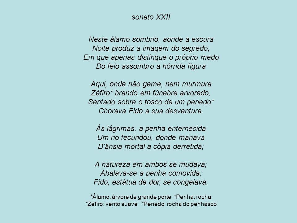 soneto XXII Neste álamo sombrio, aonde a escura Noite produz a imagem do segredo; Em que apenas distingue o próprio medo Do feio assombro a hórrida fi
