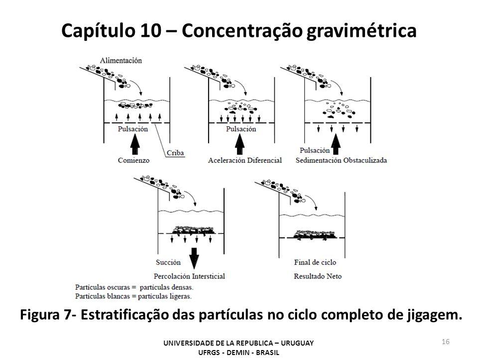 Capítulo 10 – Concentração gravimétrica UNIVERSIDADE DE LA REPUBLICA – URUGUAY UFRGS - DEMIN - BRASIL 16 Figura 7- Estratificação das partículas no ci