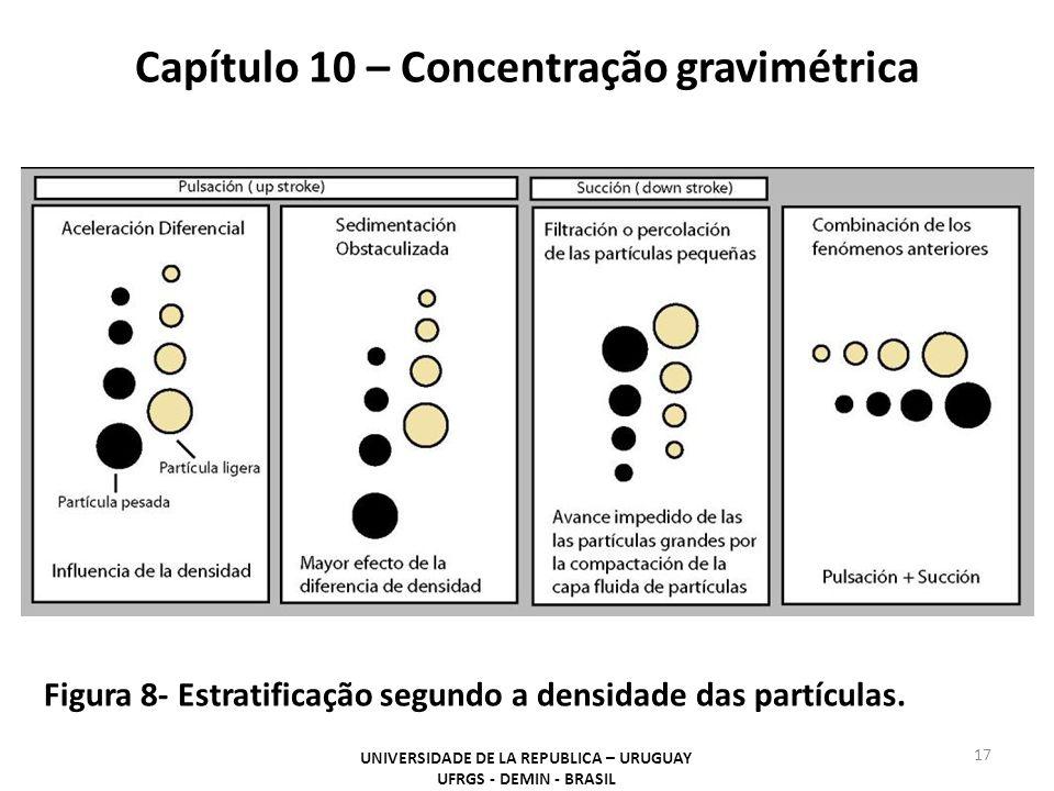 Capítulo 10 – Concentração gravimétrica UNIVERSIDADE DE LA REPUBLICA – URUGUAY UFRGS - DEMIN - BRASIL 17 Figura 8- Estratificação segundo a densidade