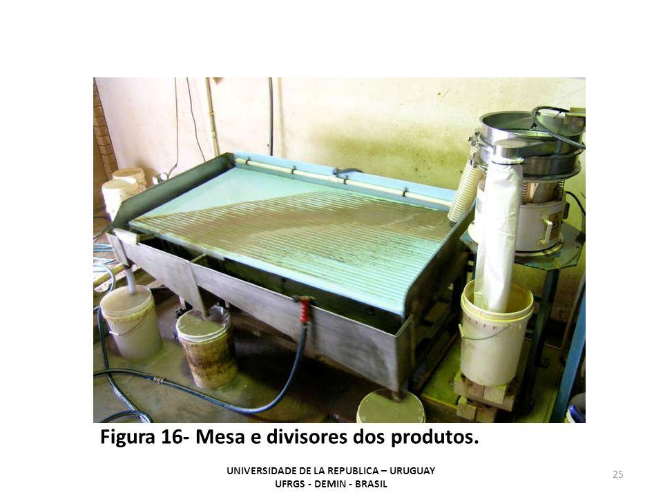 25 UNIVERSIDADE DE LA REPUBLICA – URUGUAY UFRGS - DEMIN - BRASIL Figura 16- Mesa e divisores dos produtos.