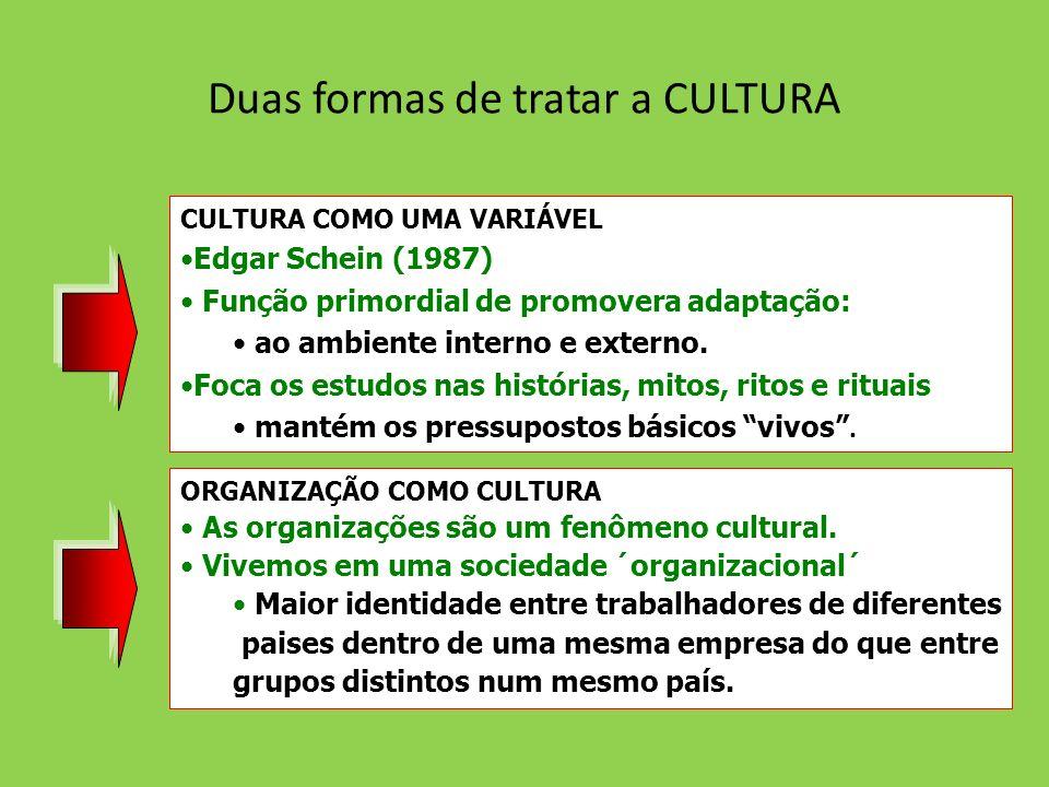 Duas formas de tratar a CULTURA CULTURA COMO UMA VARIÁVEL Edgar Schein (1987) Função primordial de promovera adaptação: ao ambiente interno e externo.
